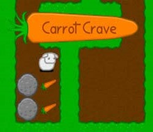carrot crave